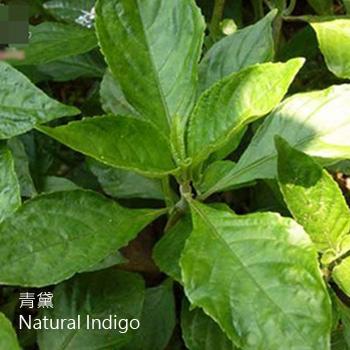 青黛-CD-Natural Indigo-清熱藥-CYY-104022