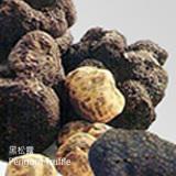 黑松露-HCL-Perigord Truffle-蔬菜-SCC-增強免疫力-SGL-201162